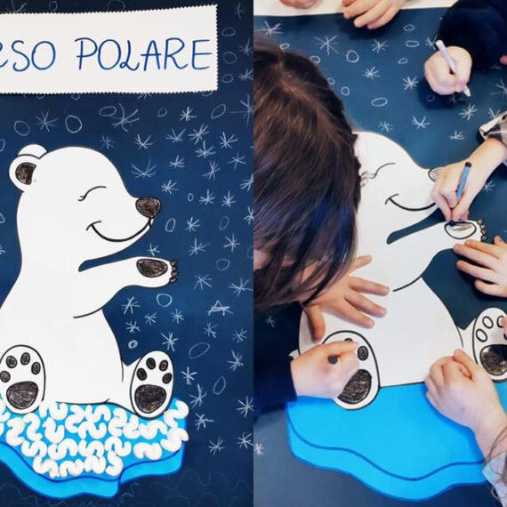 Laboratorio Scientifico Orso Polare